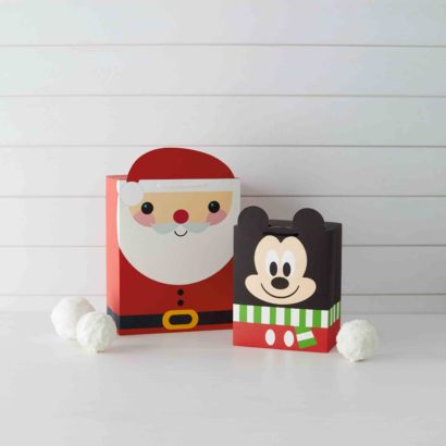 Holiday 2018 - Boxed Top Bags